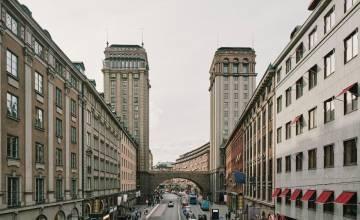 Почему Швеция депортирует высококвалифицированных трудовых мигрантов