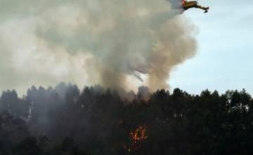 Пожарные команды одерживают верх над огнем в Испании
