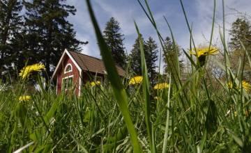 Риск пожаров на юге Швеции при повышении температуры
